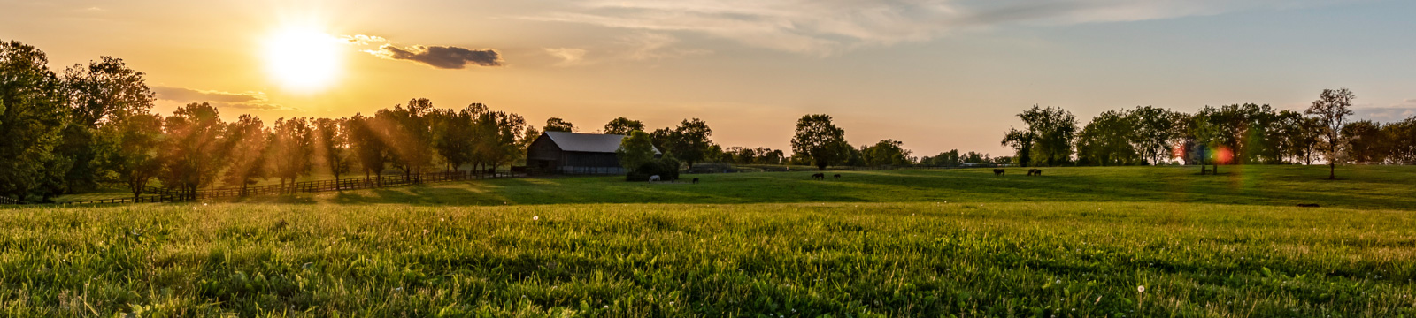 Image of sunset over farm field.